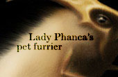 Lady Phanca's pet furrier