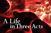 """A Life in Three Acts"""