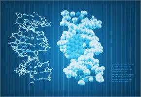 Clone structure illustration